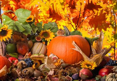 Anteprime di Novembre – Prima parte
